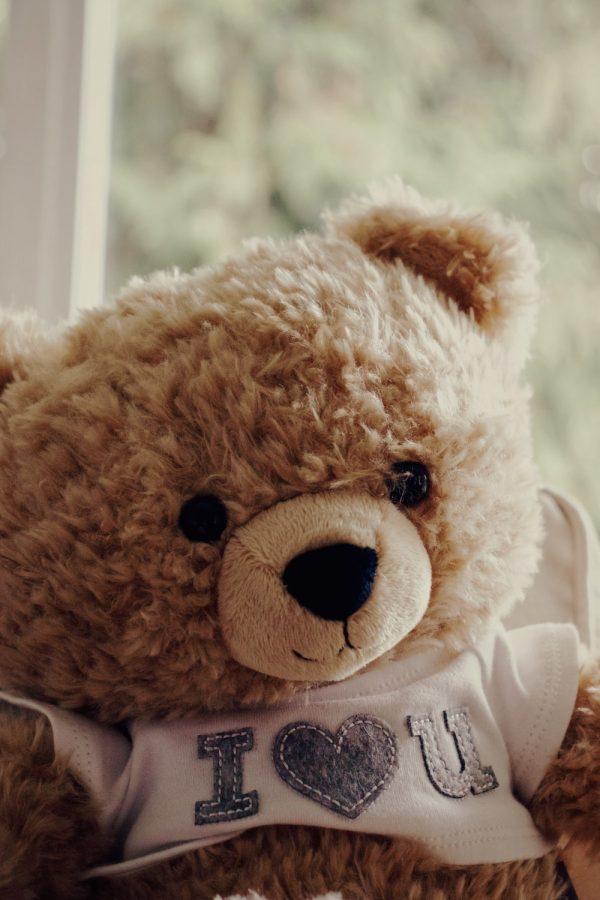 Cô nàng nào lại nỡ khước từ chú gấu bông đáng yêu này cơ chứ